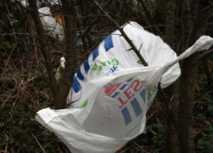 Levy on Plastic Bags, North Down Councillor Brian Wilson, Bangor